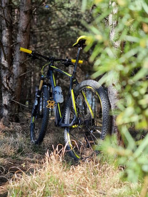 rower do 1500